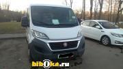 Fiat Ducato грузовой